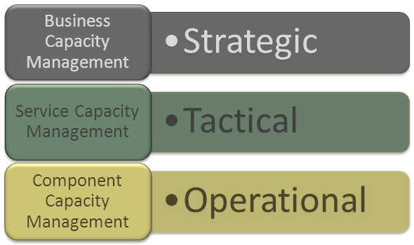 Capacity_Management_Sub_processes